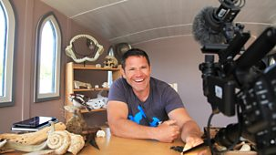 Diy Deadly With Steve Backshall - Series 1: 4. Deadly Towns And Cities
