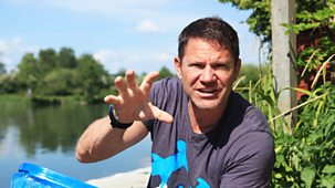 Diy Deadly With Steve Backshall - Series 1: 5. Deadly Freshwater