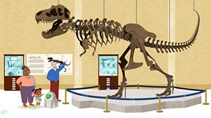 Jojo & Gran Gran - Summer: 2. It's Time To Find A Dinosaur
