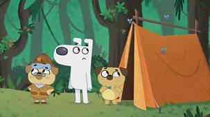Dog Loves Books - Series 1: 34. Dog Loves Camping?