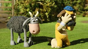 Shaun The Sheep - Series 2 - Whistleblower