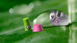 Tiny Wonders - Series 1: 1. Dew