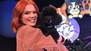 Blue Peter - Pooch Perfect And Hovercraft Racing