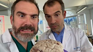 Operation Ouch! - Series 9: 9. How To Train A Brain