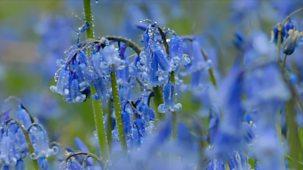 Colours - Series 1: 2. Blue