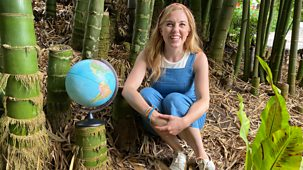 Maddie, The Plants And You - Series 1: 2. The Plants Around The World