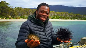 Climate Change: Ade On The Frontline - Series 1: 1. The Solomon Islands And Australia