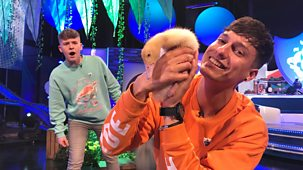 Blue Peter - Springtime Baby Animals And Upcycle Ideas