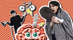 Don't Blame Me, Blame My Brain - Series 1: 9. Electrici-free