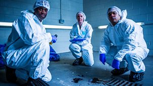 Forensics: The Real Csi - Series 2: 6. Standard Of Evidence