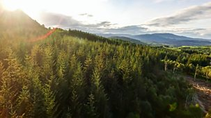 Countryfile - Highlands Rewilding