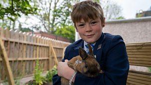Our School - Series 7: 4. The Rabbit Whisperer