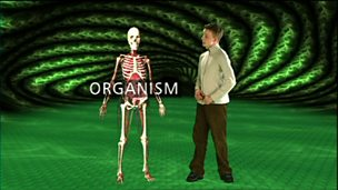 Organisms and life processes
