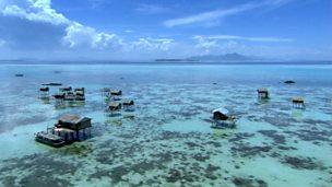 Adapting to the environment: Bajau Laut fishing