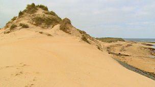 Depositional coastlines