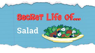 The story behind a plate of salad