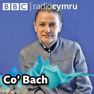 Podlediad Co' Bach