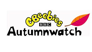 BBC Two - CBeebies Autumnwatch - Episode guide