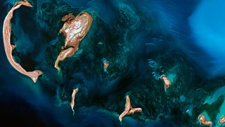BBC One - Earth from Space