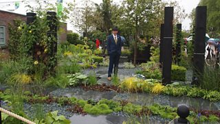 Great Chelsea Garden Challenge winner Sean Murray