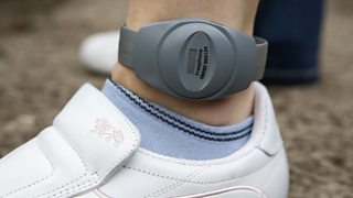 Electronic ankle tag