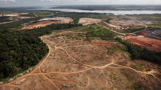 Large scale deforestation to make way for a new dam in the Amazon