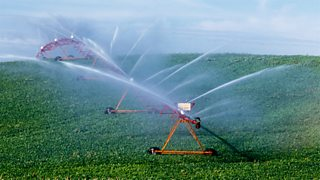 Agricultural irrigation in a soya bean plant field, Iowa, USA