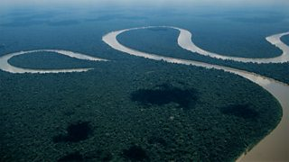 A meander and oxbow lake in the Amazon