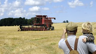 A combine harvester harvesting crops on an arable farm