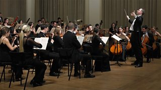 A conductor conducting his orchestra