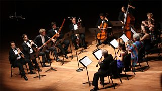 View of a chamber orchestra