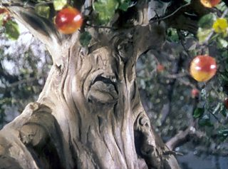 Tree from The Wizard Of Oz, 1939