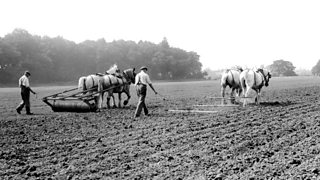 Farming field in the early 19th century