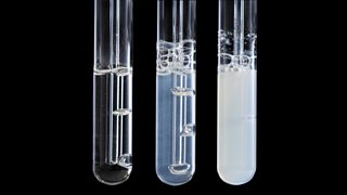 Three test tubes used in carbon dioxide test