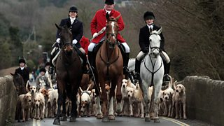 Men on horseback, with dogs, setting off on a fox hunt.