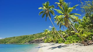 Tropical island with beach and palm trees