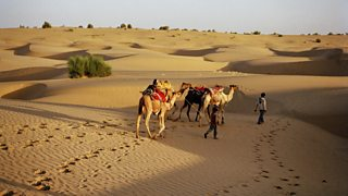 Camels and their riders cross the Thar Desert
