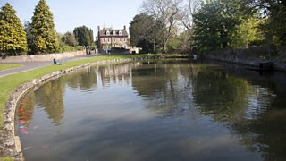 A freshwater pond in Wiltshire
