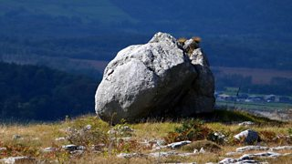Erratics in Borrowdale