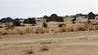 A photo of the semi-arid landscape of the Sahel