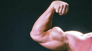 Arm muscles of a bodybuilder