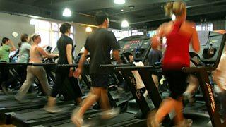 Group of runners on treadmills