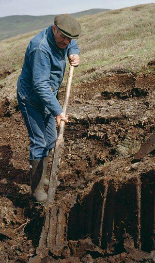 A man cutting peat in a field
