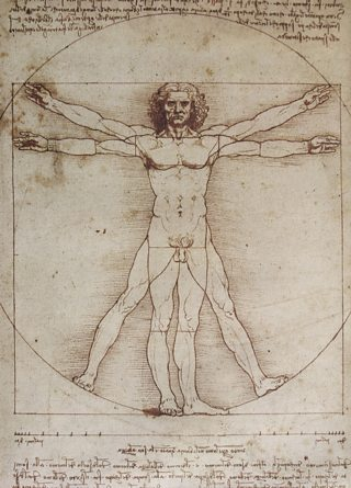 The Proportions of the Human Figure (After Vitruvius), Leonardo Da Vinci, c.1492, pen and ink, Coston Stock / Alamy Stock Photo