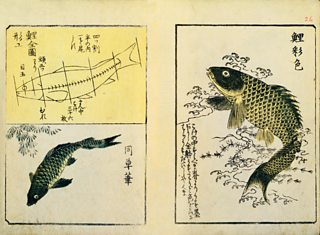 Swimming Carp, from A Picture Book Miscellany, Utagawa Hiroshige, 1849, woodblock print, V&A Images / Alamy Stock Photo