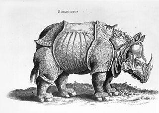 The Rhinoceros, Albrecht Durer, c1515, woodcut