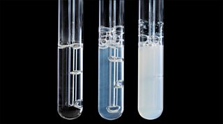 Carbon dioxide in limewater
