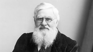 Welsh naturalist Alfred Russel Wallace (1823 - 1913).