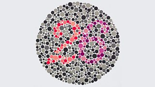 A colour blindness test