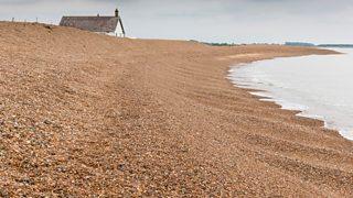 Photograph of a shingle beach with a steep profile